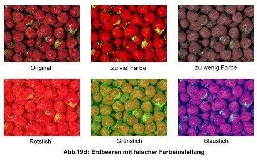 Testbild Erdbeeren