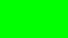 Burosch Pixel Error Green